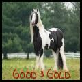 good & gold
