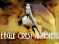 eagle crest arabians